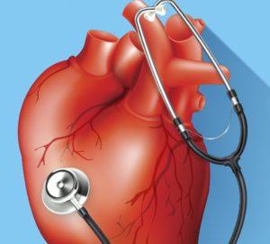 dr. pocket