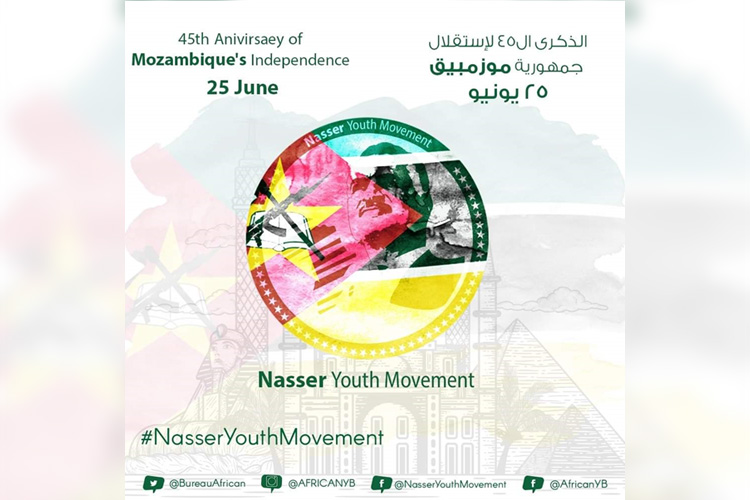 Nasser Youth Movement