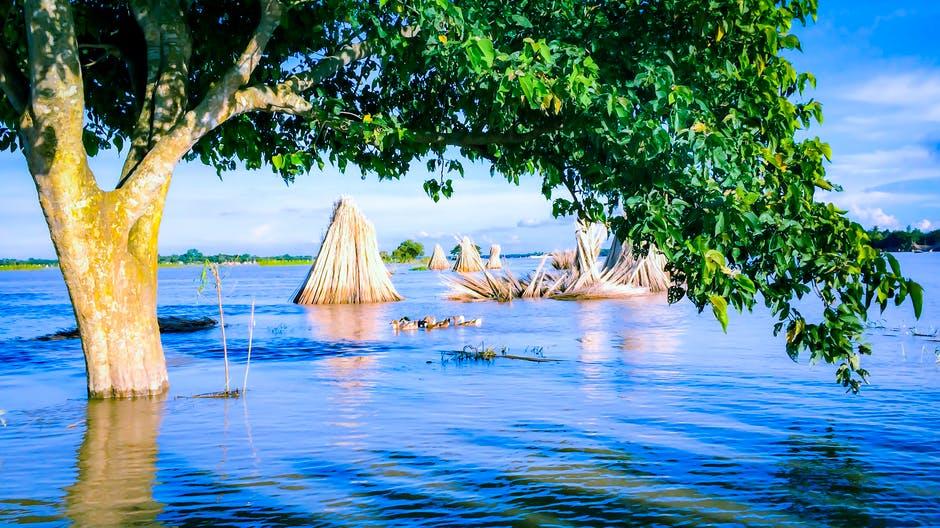 India Assam Floods