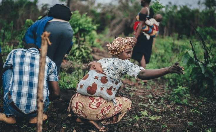 Proposal of Lowest Funding for Women in Agribusiness in Four Years!
