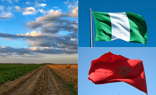 Nigeria Signs Deal With Morocco On Phosphate Import, Ammonia